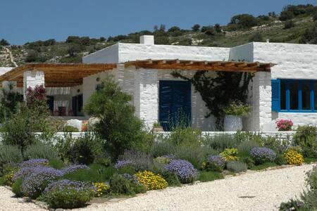 Luxury Villa, Ocean Views on Paros - Paros - Villa