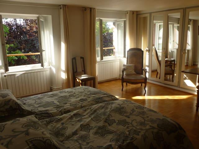 Ein charmantes Zimmer in Elsass. - Reichshoffen - Bed & Breakfast