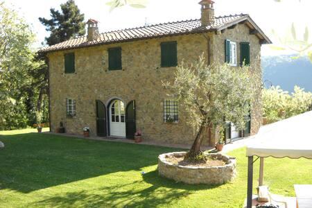 VILLA BUCA DEL TASSO  - Capannori - Villa