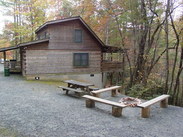 Campfire Pit / Picnic Table