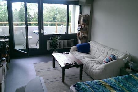 Couch in meiner 1-Zi-Whg - 腓特烈港(Friedrichshafen)