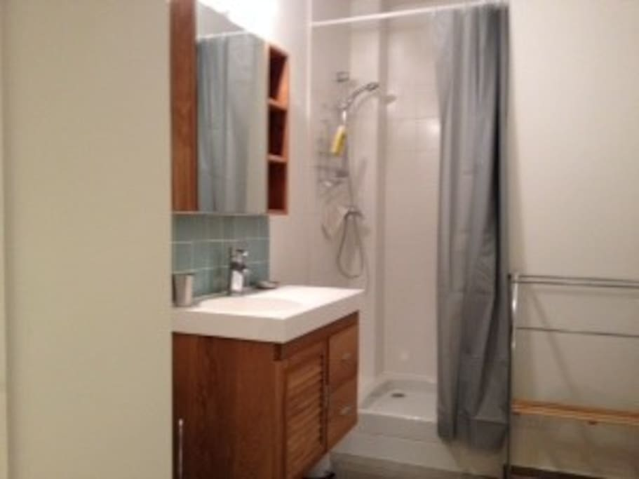 Salle de bain avec douche. Tout est refait à neuf.
