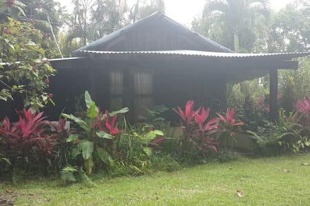 Pineapple Cabin in the Jungle
