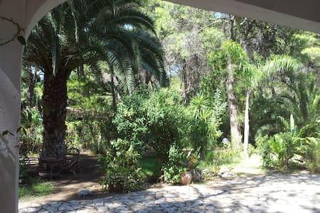Villa Mito in pineta Castellaneta M - Castellaneta Marina - Villa