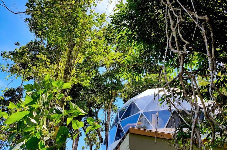 Chira Glamping - Family themed Tent Monteverde