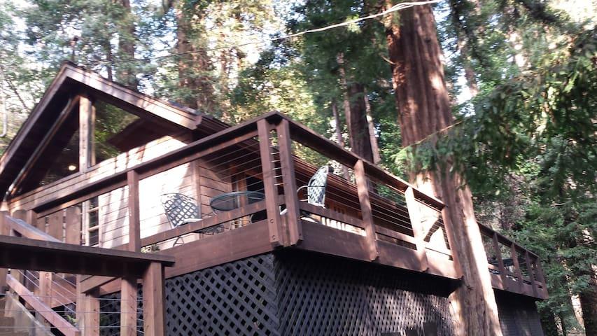 Mondrian Cottage - Carmel - House