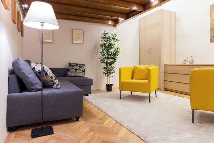 Johnny's city apartment+private guide and transfer