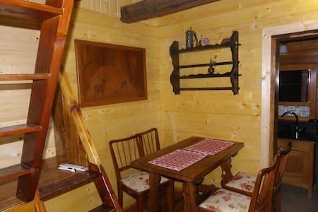 foresthouse2 - Rakovica - House