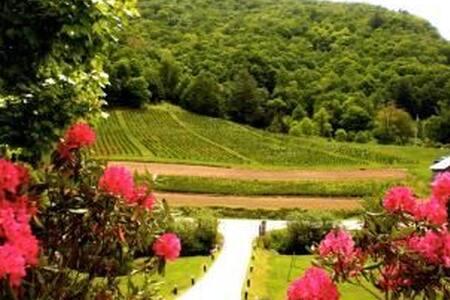 Cedar Villa with Hot Spa, Hammock, View, Wifi, FUN - Glenville