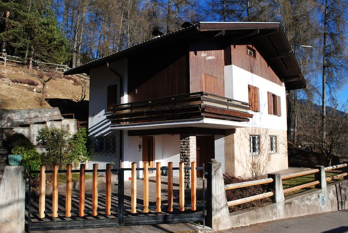 House in the woods in the Dolomites - Varena - House