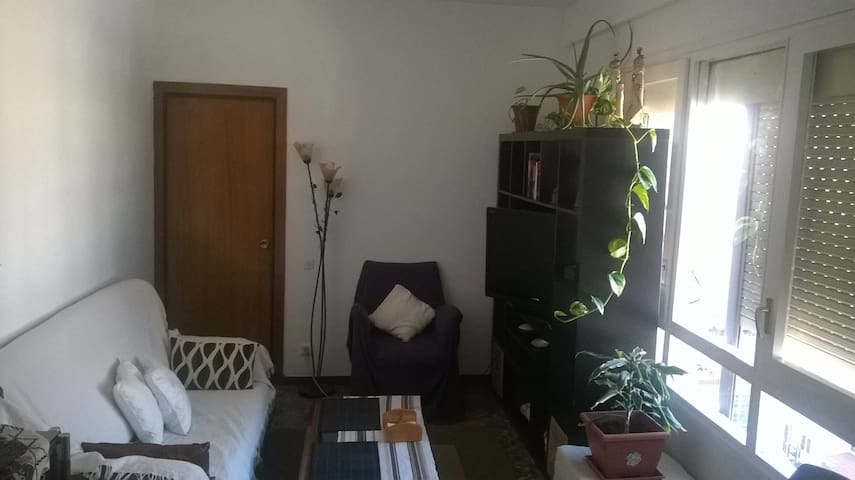 Single room in barrio el Clot Barcelona.