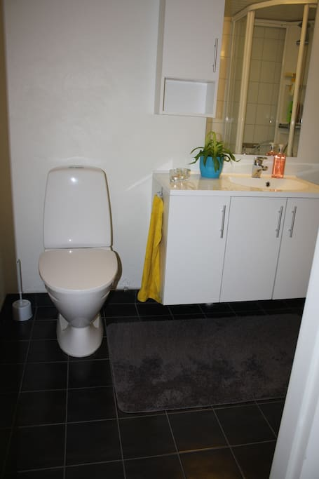 Bathroom with heated floor.