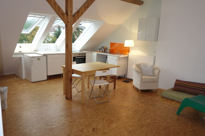 Center and close to airport: 2 and 1/2 room flat