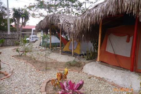 Tent-3 - Tent