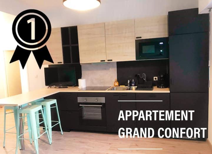 Magnifique appartement 70m2 2 chambres confort (1)