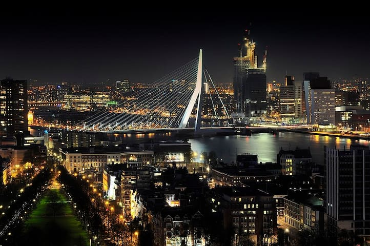 Penthouse Bookingfiona Rotterdam city downtown