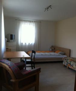 Nähe Frankfurt-Flughafen, Zimmer mit eigenem Bad - Rüsselsheim