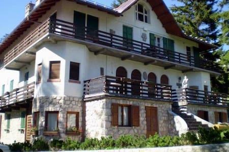 Centralissimo appartamento vicino impianti da sci - Cortina d'Ampezzo - Appartement