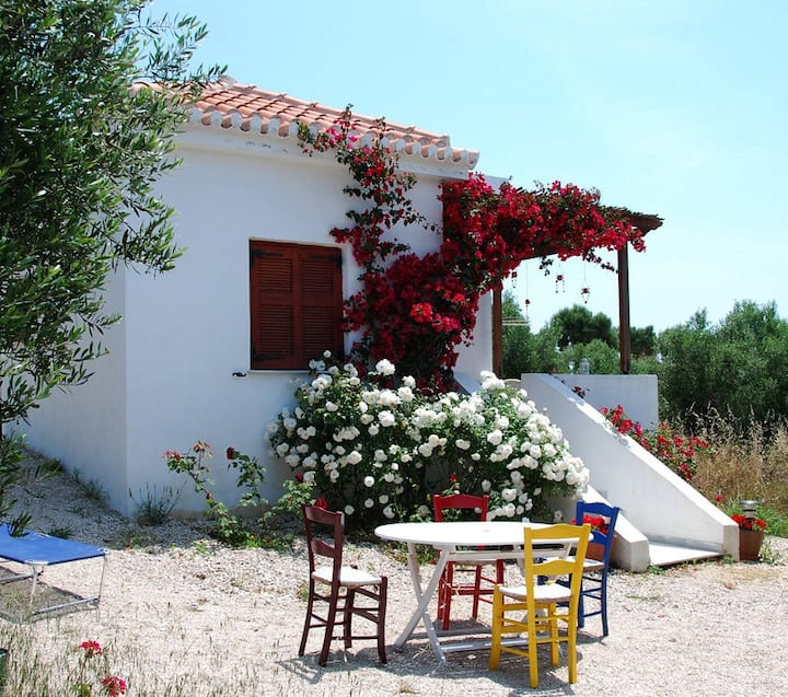 Holiday Villa in tranquil olive grove,pool,seaview