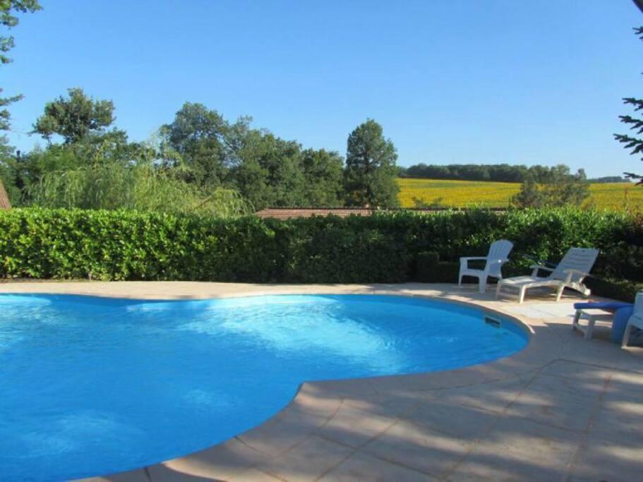 la piscine privé