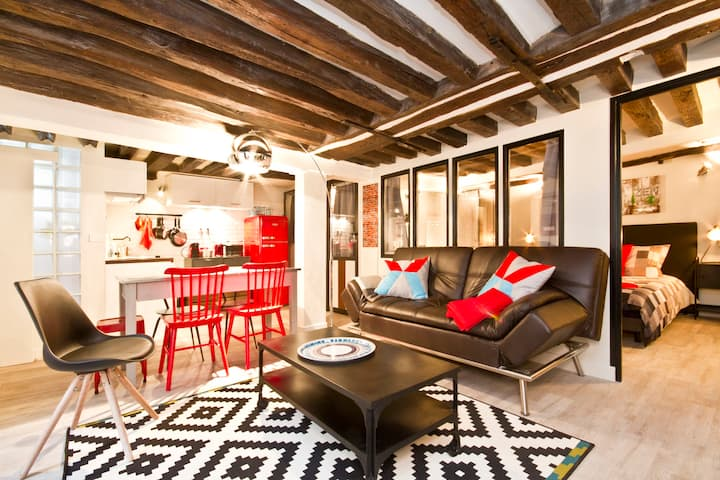 AMAZING LOFT NEAR PARIS OPERA 4/5 Pers