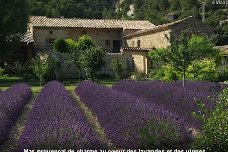 A B&B in lavender fields - Le Pègue