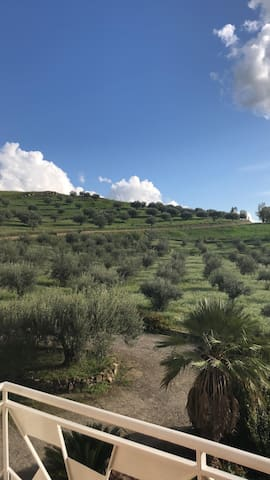 SICILIAN HILLS APARTMENT ---> (OLIVES PEACE)