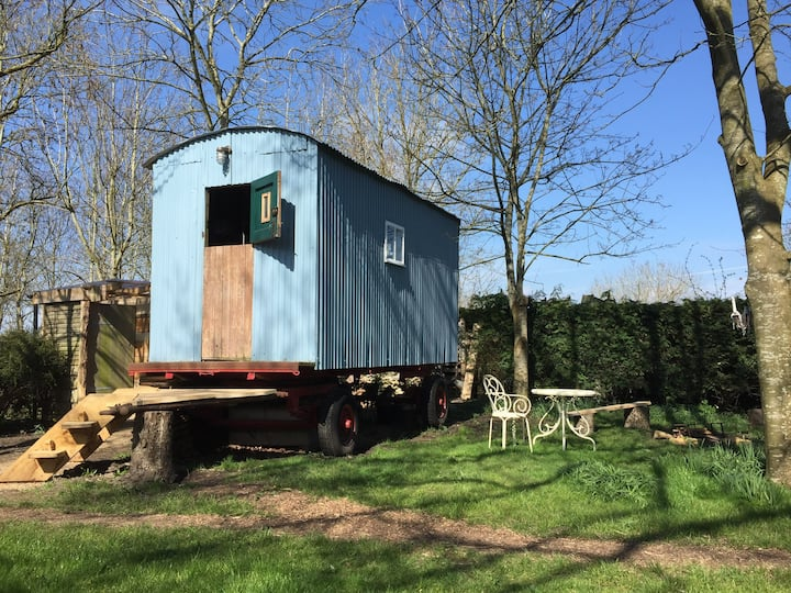 Unique rustic shepherds hut