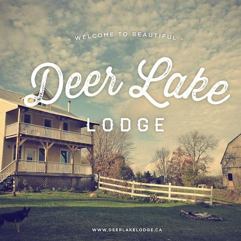 Deer Lake Lodge Your Northern Home Away From Home