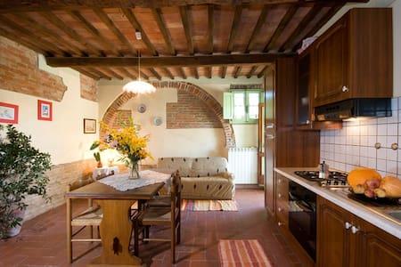 App. il Fico campagna Pisa piscina - San Pietro Belvedere - Apartament