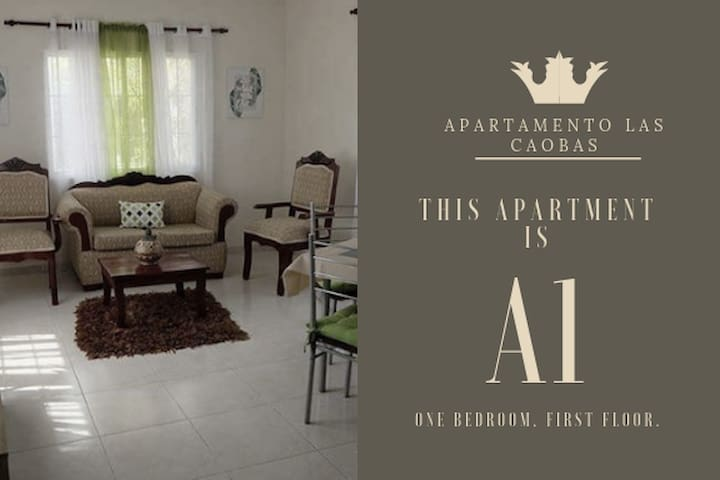 (AC/WIFI/SECURITY) 1BR Apartment Las Caobas #A1