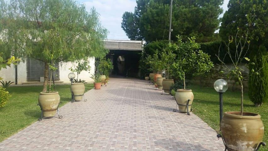 Casa dodo'  ...Villa al mare. - Punta Milocca - Rumah