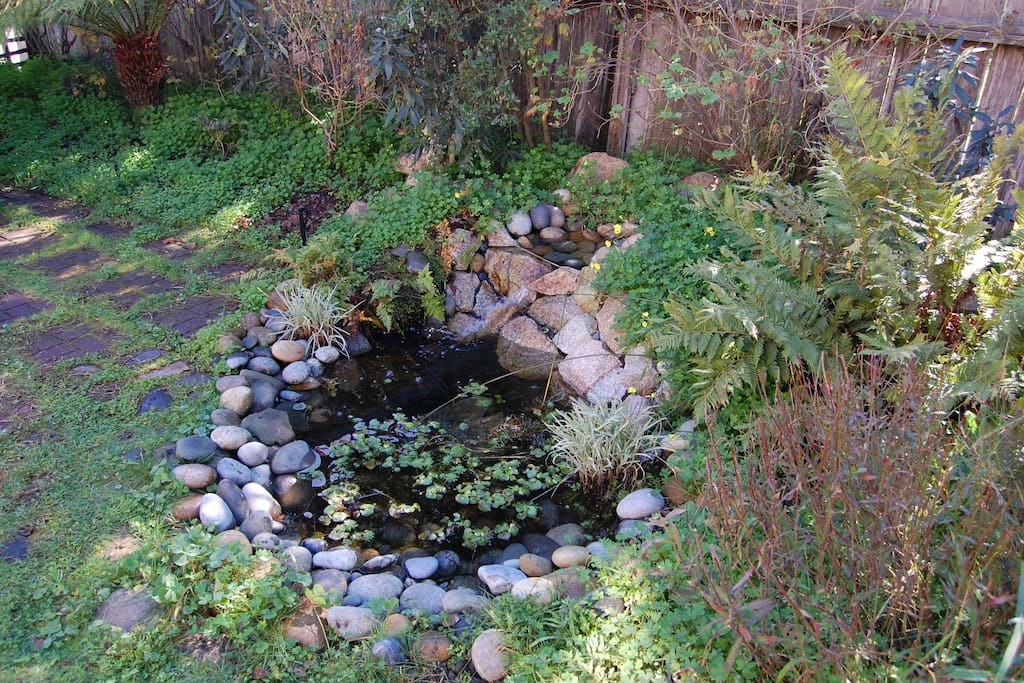 The pond and waterfall attract hummingbirds, frogs, and birds that love to bathe in the water