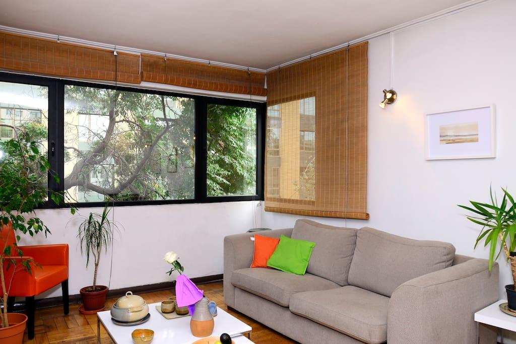 living - sofá y ventanal