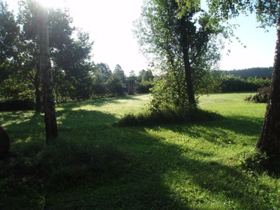 Small private meadow with a fence around. Safe for kids.