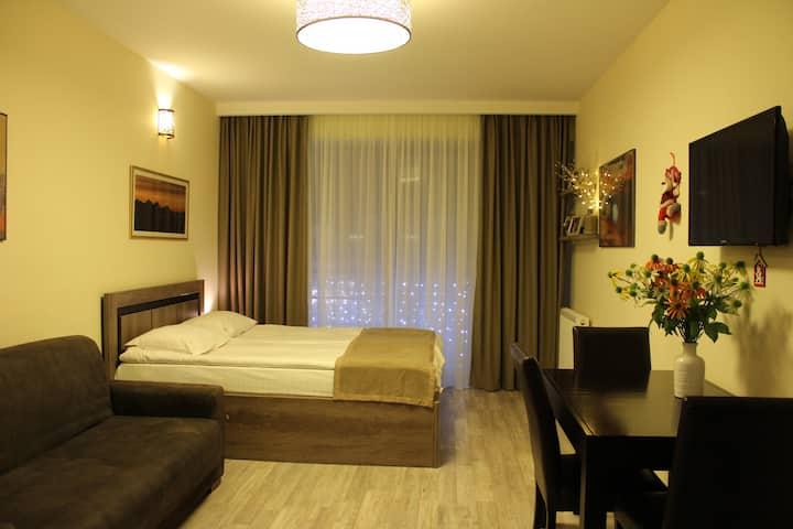 Alpen Apartment in New Gudauri 2
