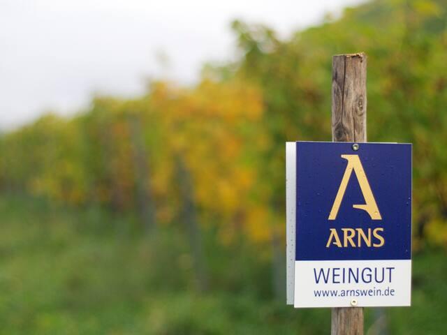 Weingut Arns - ökologischer Weinbau