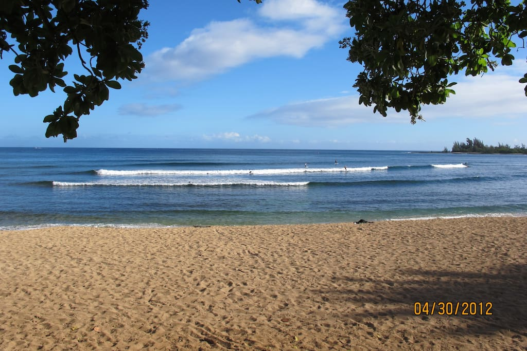 Surfs up; great for all levels. Located across the street.