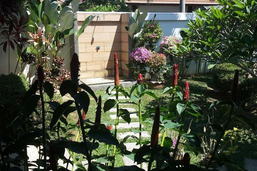 le coin douche exterieur dans le jardin tropical