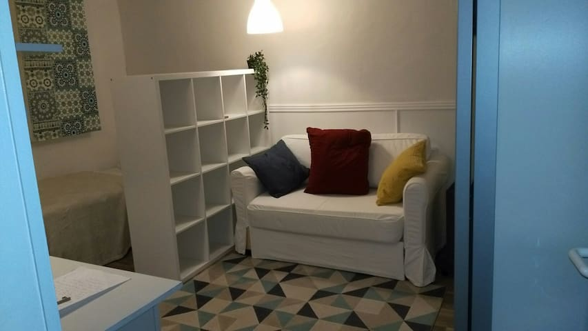 Newly renovated basement Studio in city center