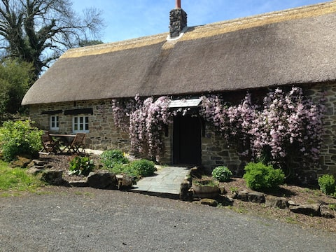 Beautiful, quaint thatched cottage on Dartmoor