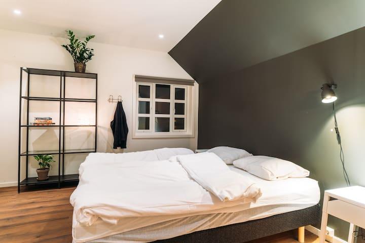Bedroom with bathroom and walk in closet