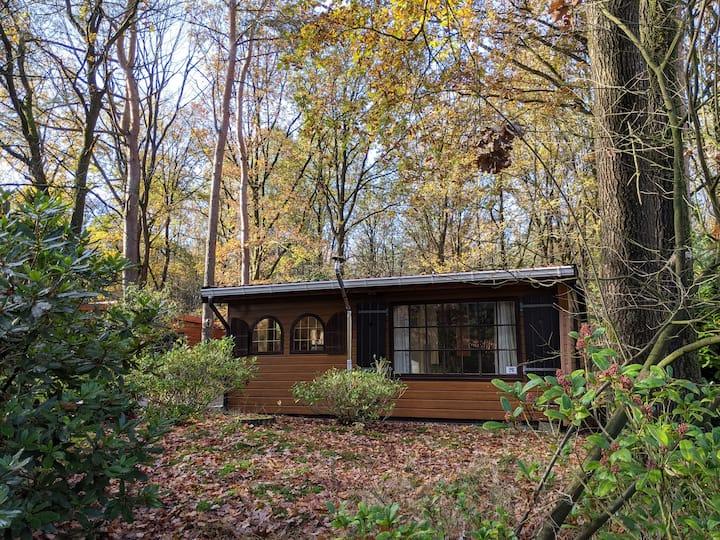 Sfeervol chalet in een rustig bosrijke omgeving