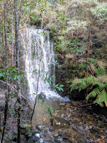 Waterfall, a 20 minute stroll from our back gate