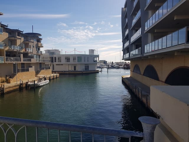 Dolphins at your door  at 3 The Palladio Mandurah.