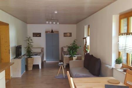 Gemütliche Ferienwohnung in Niederfischbach - Niederfischbach - Lyxvåning