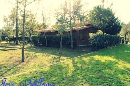 Villa Arancione - San Sostene Marina - Villa