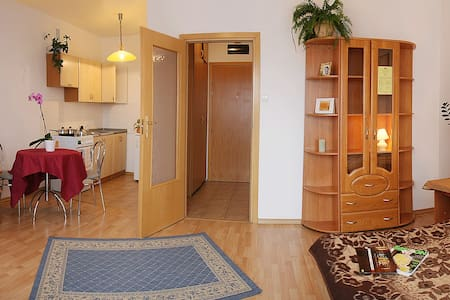 Apartament Jednopokojowy - Konstancin-Jeziorna - Apartmen