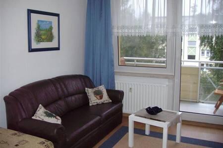 sonniges Apartment mit Parkplatz Nähe der Altstadt - Greifswald - Apartament