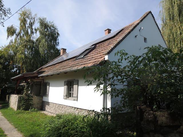 Tamara Ház / Tamara House